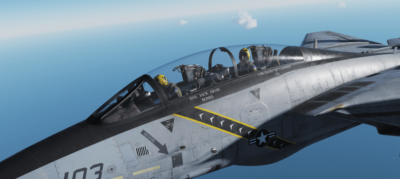 DCS: F-14B par Heatblur Review